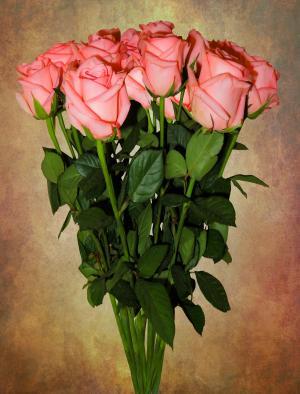 生日花束, 生日, 花束, 花, 玫瑰, 婚礼花束, 情人节那天