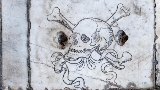头骨, 刻, 大理石, 墓, 比萨