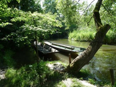 卡恩, 启动, 水, 老莱茵河, 聋倾吐, 心情