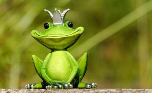青蛙, 图, 国王, 可爱, 有趣, 甜, 乐趣
