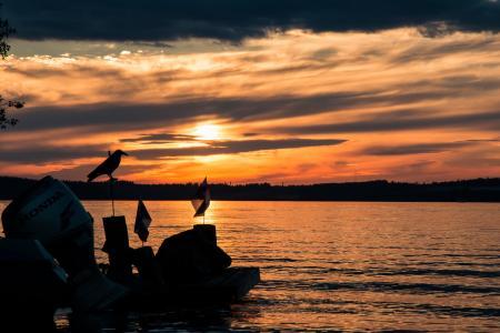 湖, 日落, 云彩, 晚上, 海滩, saimaa, 芬兰语