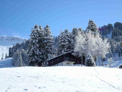 冬天, 雪, 寒冷, 山, 山脉, 景观, 自然