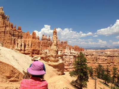 布莱斯, 旅行, 峡谷, 夏季, 徒步旅行, 公园, 具有里程碑意义