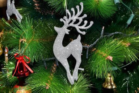 圣诞节, 树, 圣诞树, 圣诞快乐, 庆祝活动, 圣诞装饰, 传统