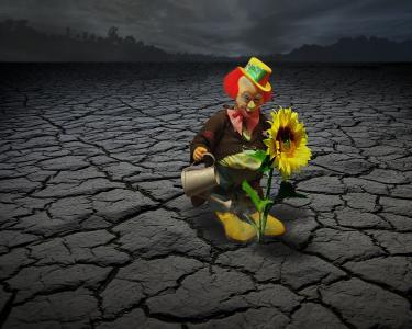 小丑, 马戏团, 脸上, 有趣, 乐趣, 太阳花, 照片蒙太奇