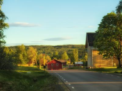 瑞典, 秋天, 秋天, 天空, 云彩, 森林, 树木