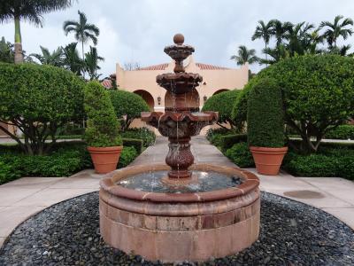 来源, 水, 花园, 喷泉, 树, 饮水机, 棕榈树