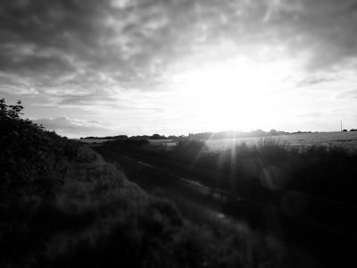 黑白, 云彩, 字段, 草甸, 早上, 日出, 日落