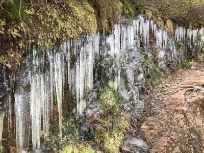 冰柱, 感冒, 冬天, 水