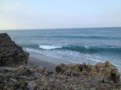 海洋, 珊瑚, 波, 海, 礁, 自然, 海洋