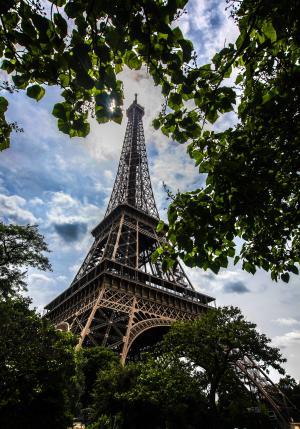 埃菲尔铁塔, 巴黎, 纪念碑, 叶子, 白天, 法国