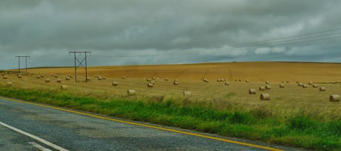 道路, 景观, 干草捆, 字段, 自然, 宽, 草甸