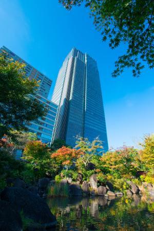 东京, 中城, 木, 浅草, 建筑, 城市, 建设