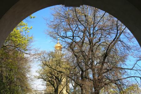拱, 圆形, 入口, 开幕, 树木, 冲天炉, 黄金
