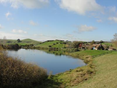 水, 景观, 自然, 河, 湖, 水课程, 绿色