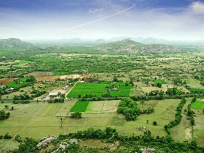 景观, 东印度, 高级房, 表面, 印度, 农村, 土地