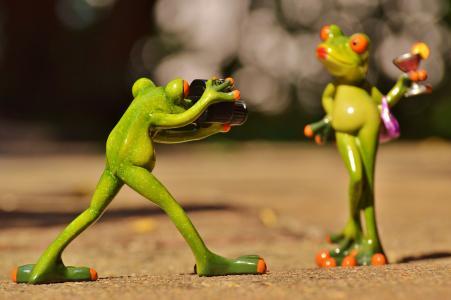 青蛙, 摄影师, 模型, 照片模式, 女士, 构成, 相机