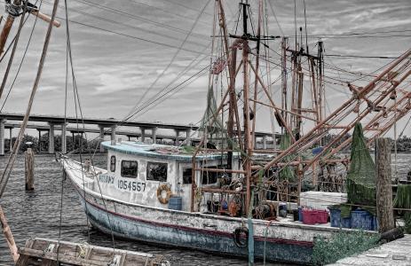 渔船, 小船, 多格, 港口, 船舶, 捕鱼, 海洋