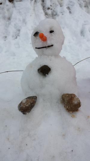 雪人, 冬天, 雪